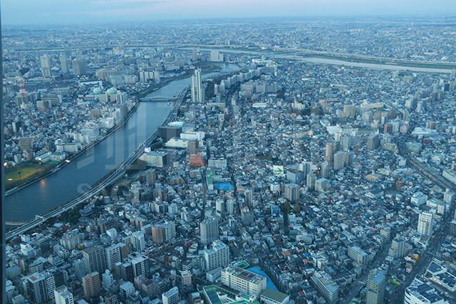 晴空树鸟瞰东京