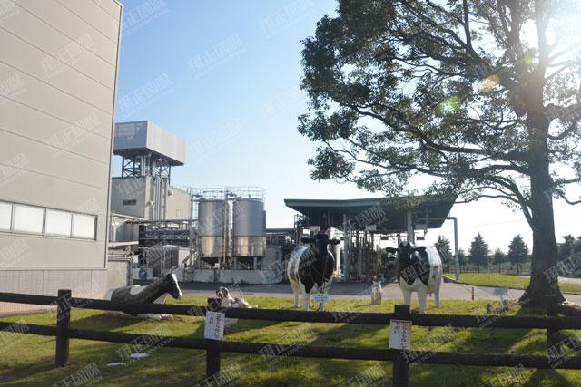 4明治乳业工厂参访